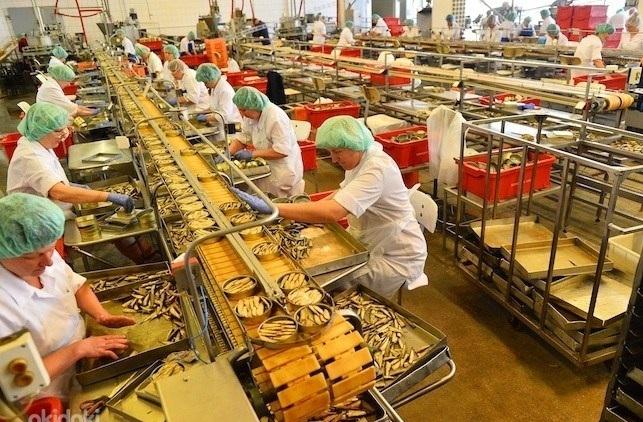 Работа на рыбном заводе