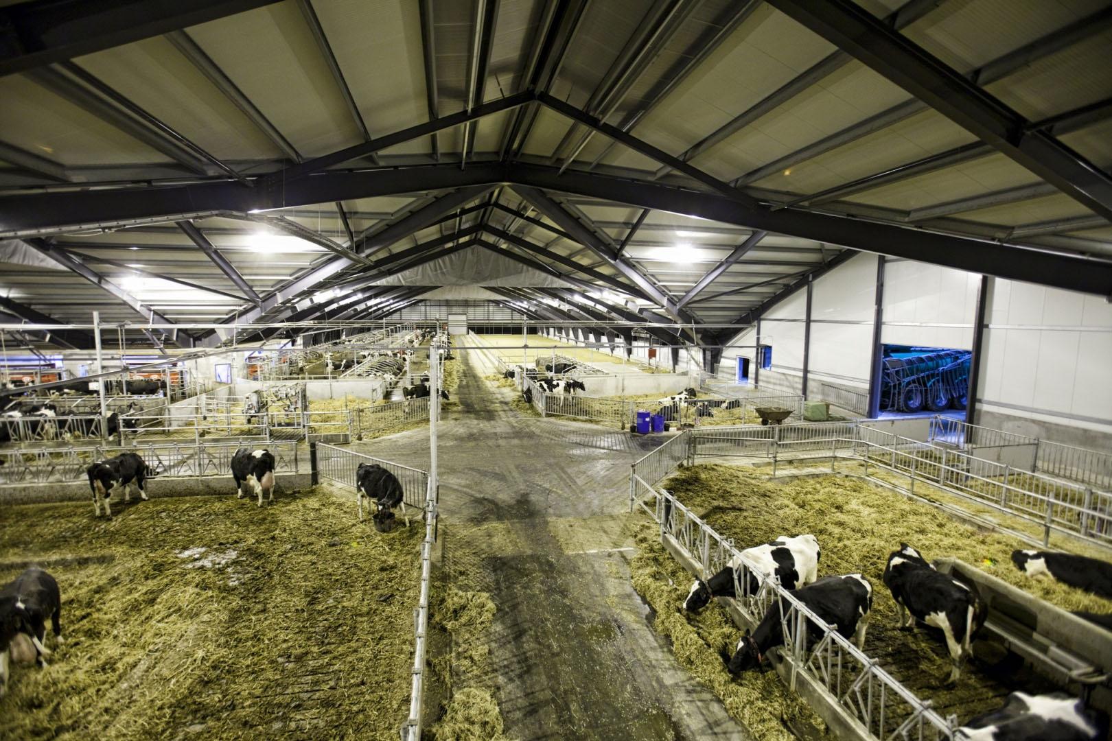 работа в животноводческих комплексах