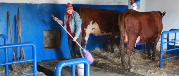 Подсобный рабочий в сельском хозяйстве