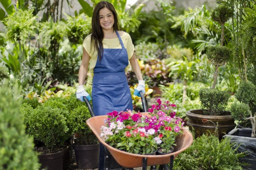 Работа садовником за границей