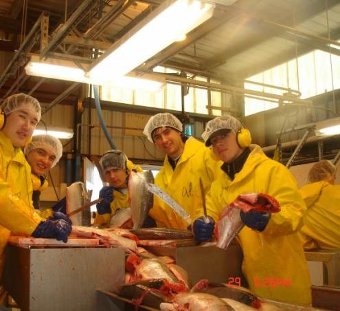 Работа студентам за границей на рыбзаводе