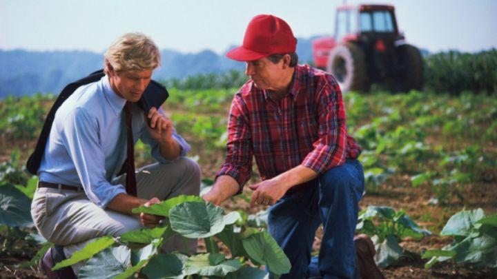 робота у сільському господарстві