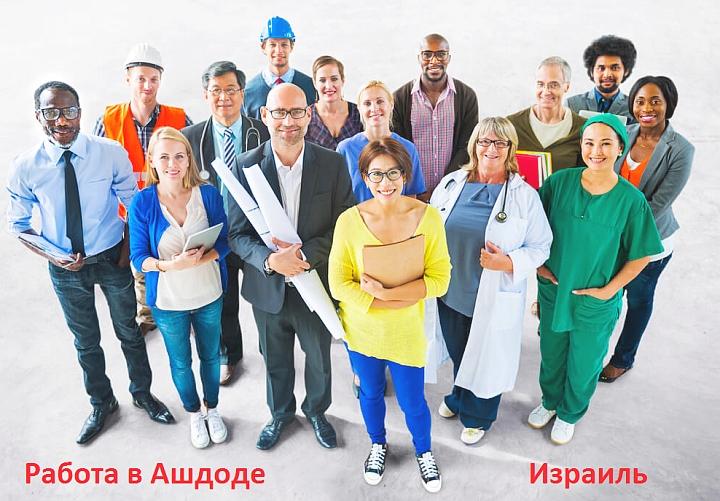 востребованые профессии в Ашдоде